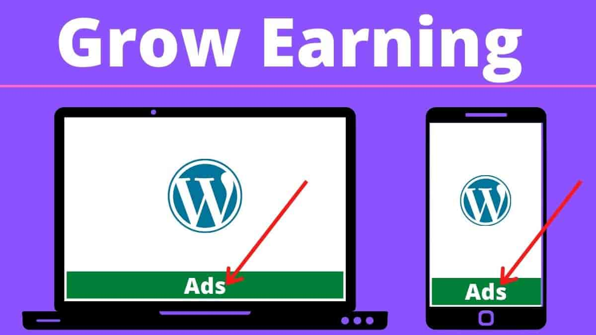 floating bottom ads WordPress without plugin